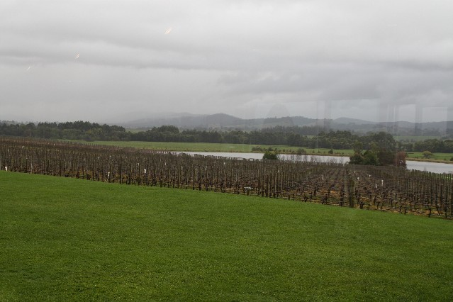 Yarra Valley Travel Guide